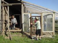 Hühnerbeheiztes Gewächshaus: Ein bestehender Schuppen wird mit Altbaustoffen zu einm Hühnerbeheiztem Gewächshaus umfunktioniert